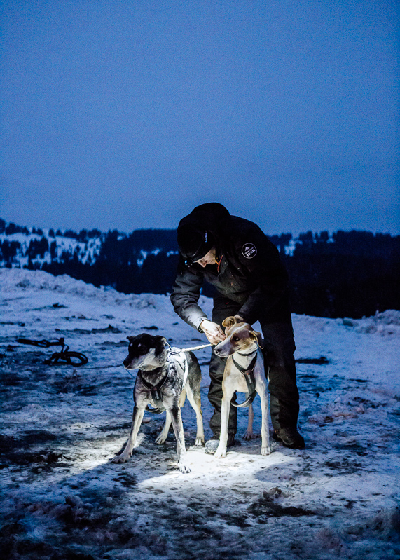 PHS 20150102-REMY_COSTE_MUSHER--16